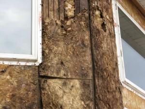 damaged stucco