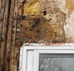Colorado exterior stucco inspection specialists